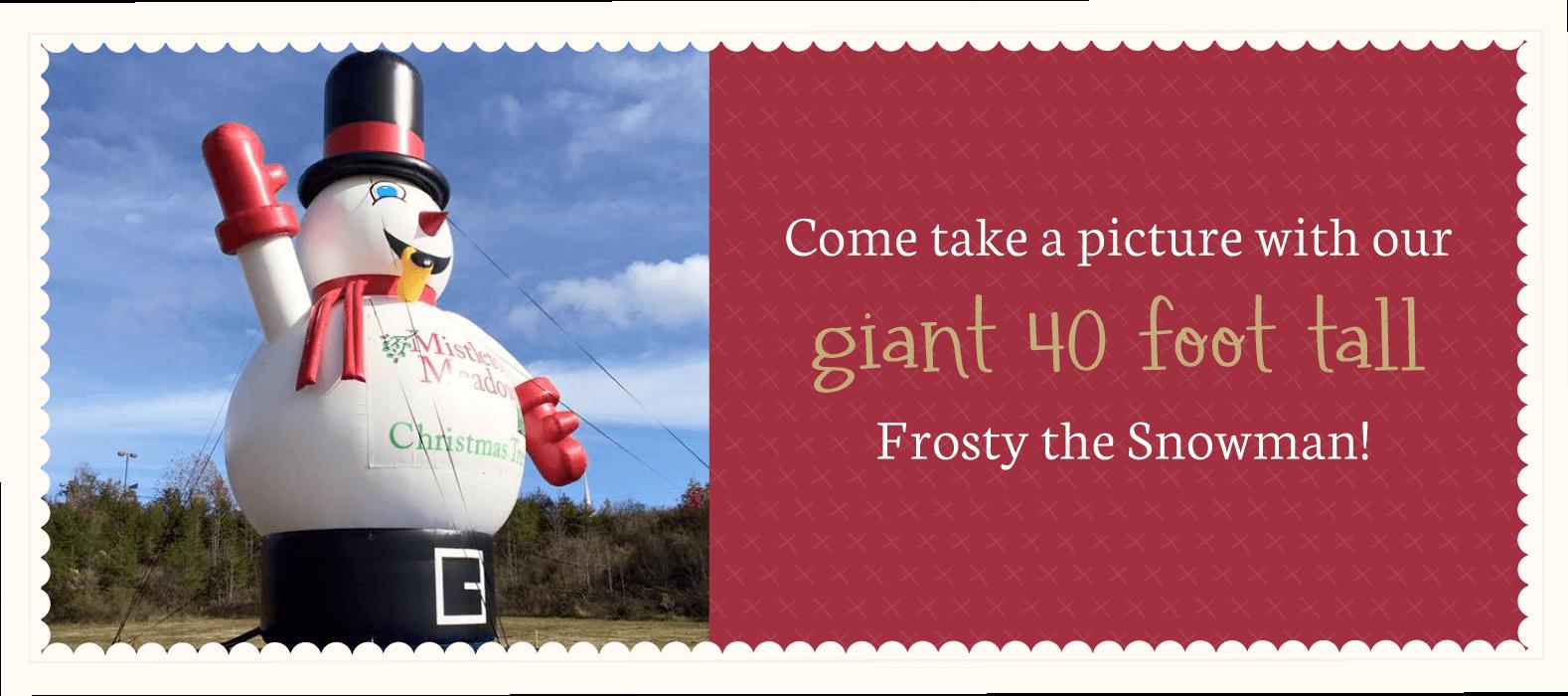Frosty40landscape