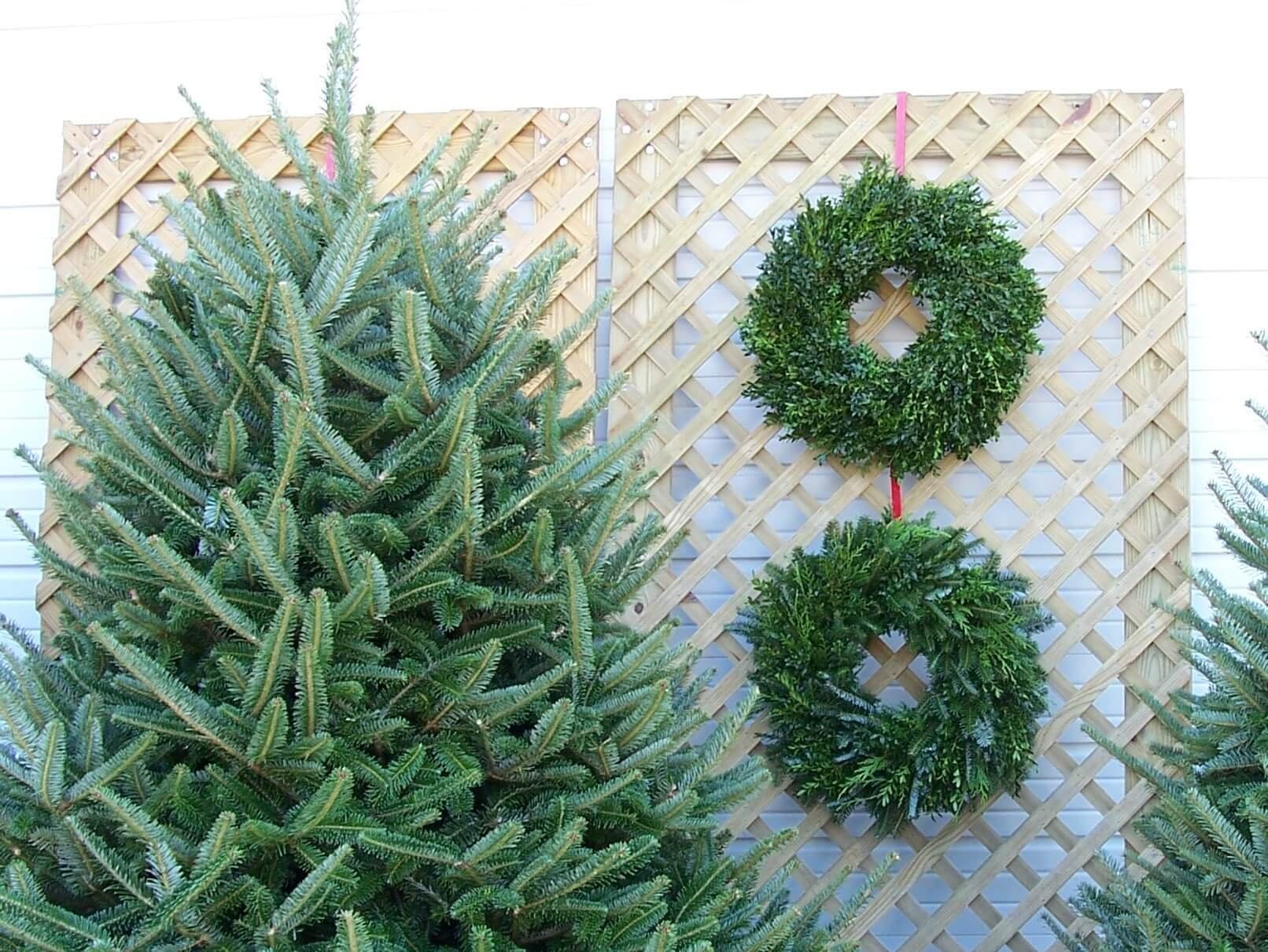 Wreaths and trees (2)
